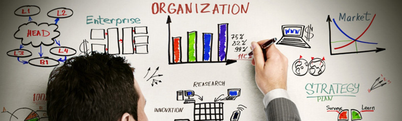 organisational-management